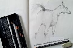 Stefan-Lindblad-hastar-horses-teckningSkissblocket_1-2016